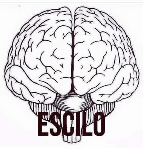escilo-cervello