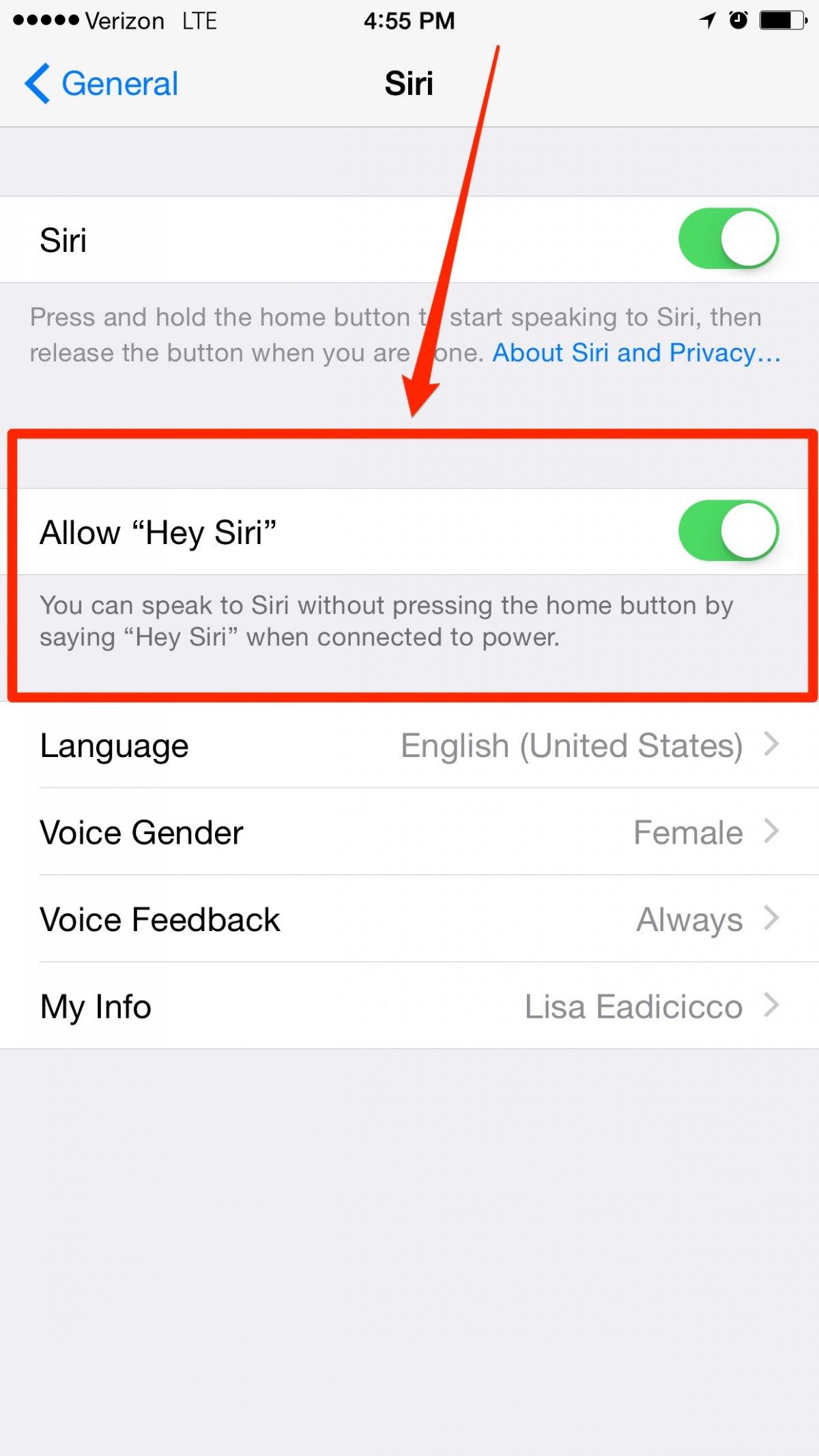 usare Siri senza mani